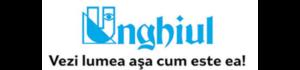 unghiulciomlogo